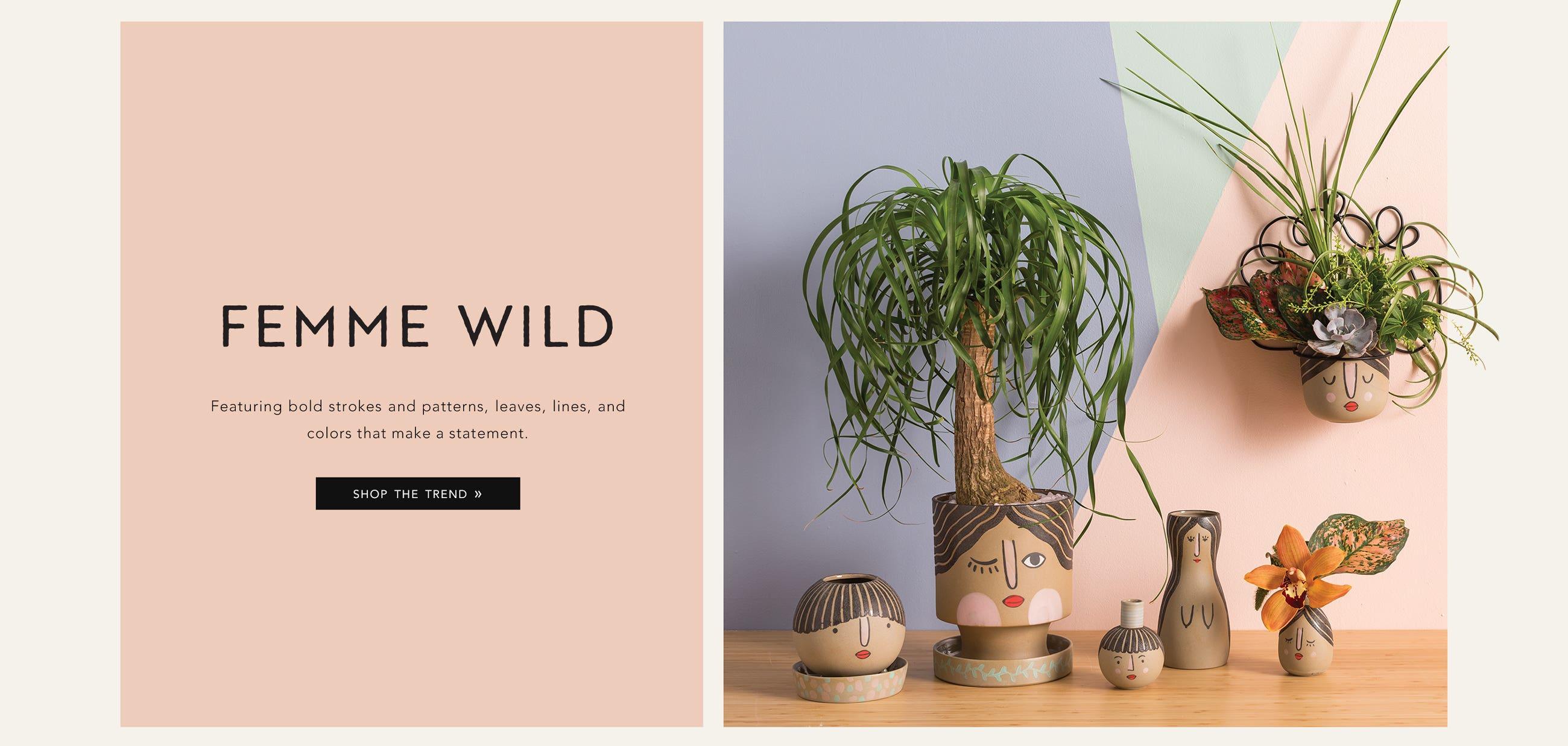 Shop Femme Wild Trend