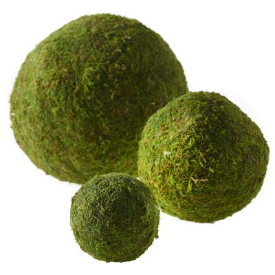 Moss Sphere