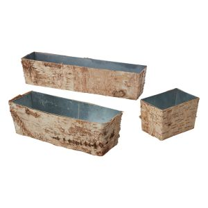 Birch Collection with Zinc