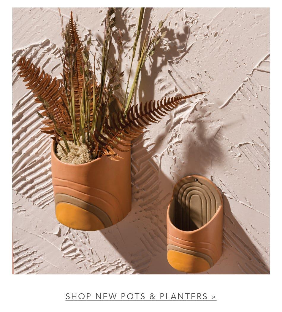 Shop New Pots & Planters
