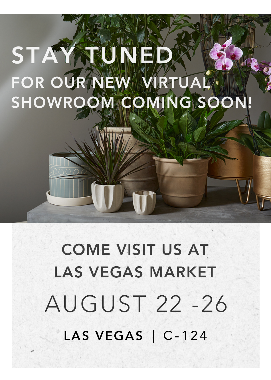 Come Visit us at Las Vegas Market August 22 - 26 & Stay Tuned for our Virtual Showroom!
