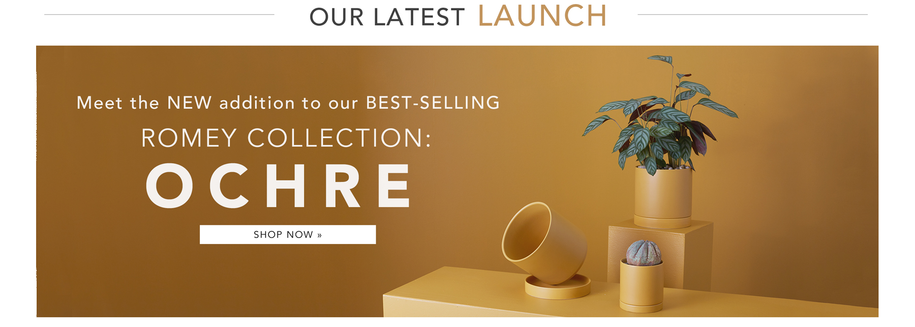 Introducing Our New Romey Pot in Ochre