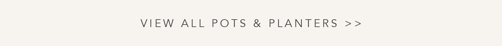 Shop All Pots & Planters