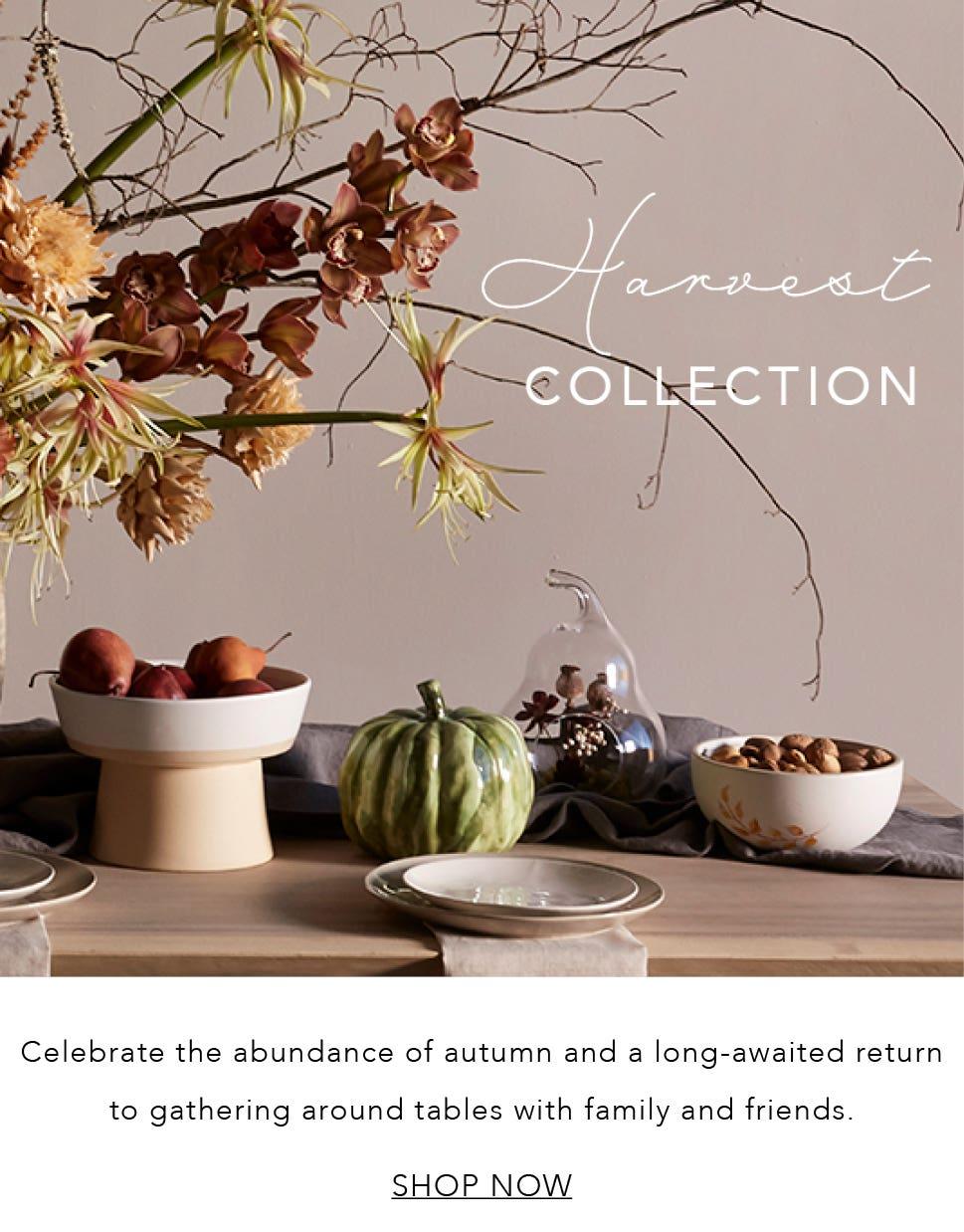 Shop Harvest Collection